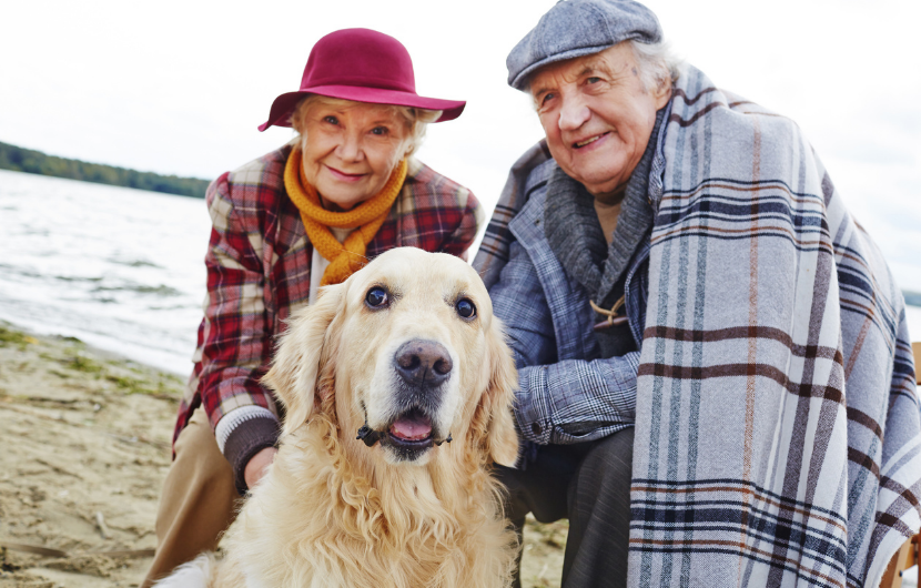 Happy Seniors with their pet